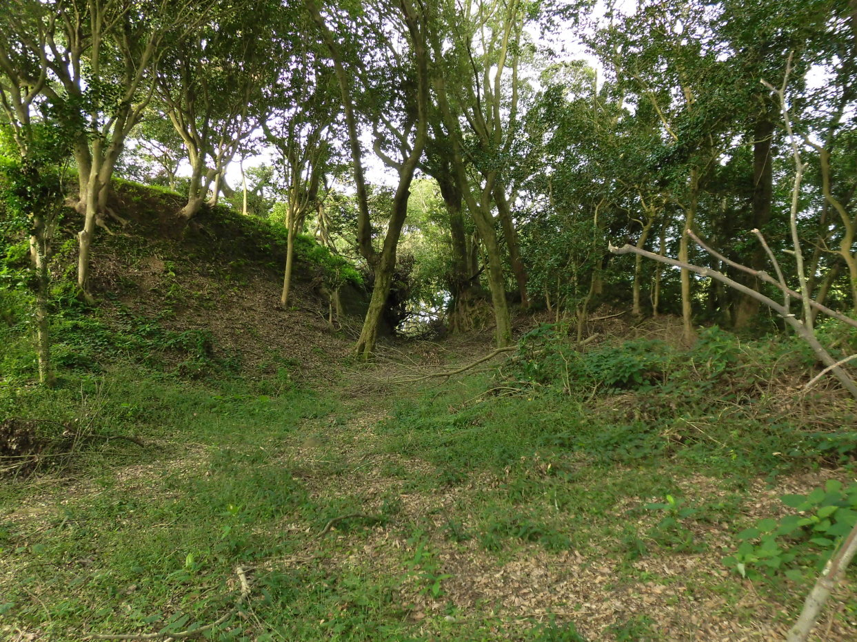 郭Ⅱの土塁と堀