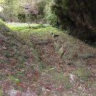 本丸東側虎口付近の遺構