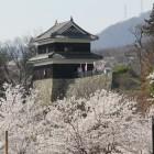 桜に浮かぶ西櫓