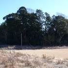 西側寄り伝居屋敷跡を見る、左は堀切