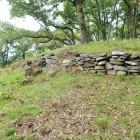 2郭側から見た本郭下の石垣