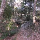 空堀と木橋