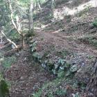 石垣7(登城路の堀切の北東)