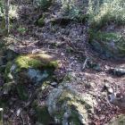 石垣8(登城路の堀切の東)