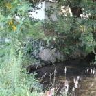 本丸西側の石垣と池
