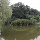 御所沼越しに東、館跡先端を見る