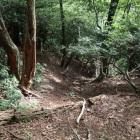 東尾根の竪掘り