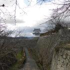 備中櫓と高石垣