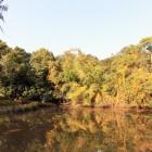 ひぐらし池
