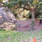 石垣と土塁と空堀