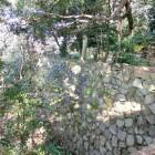 稲荷曲輪の石垣