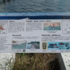 本丸跡の説明板