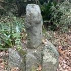 飯綱権現の脇に男根型の道祖神が鎮座しています。