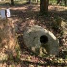 柱石(出丸)
