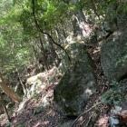 土塁(?)に巨石