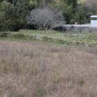 北側の石垣