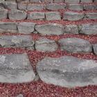 桑実寺から下る石段の隙間を埋め尽くす紅葉