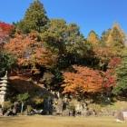 森藩陣屋跡の庭