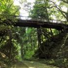 大堀切より見た本丸木橋