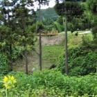 馬出と三郭間の堀切と木橋