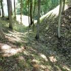 本丸下の折れる竪堀
