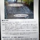 中井先生のコメントが掲載されていました。