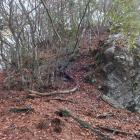 西の丸・四の曲輪西端の櫓台西下は岩盤むき出しの斜面