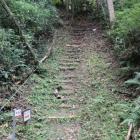 本丸登城階段、踊り場からの二段目、段崩れ危険
