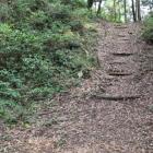 本丸から中の城曲輪への登城路