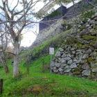 本丸北の石垣