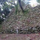 南の丸隅櫓の石垣