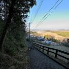 滝の曲輪・本丸の北側.奥が多摩川