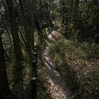 山の神曲輪と小宮曲輪の通路