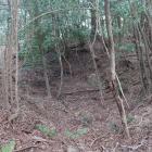 一の曲輪北東下の竪堀