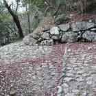 大手道入口、東の丸Ⅰの東先端下の石垣