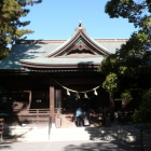 浜松八幡宮本殿、右手大楠
