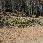 東曲輪群の石垣
