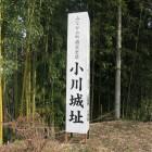 小川城の看板