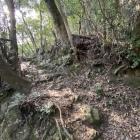 石垣も残る曲輪。この数m下に巨岩がある。中世以前から使われていたかも?
