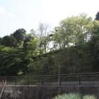 東の駐車場から陣屋の東崖俯瞰