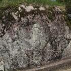 陣屋西側の石垣に在る石仏