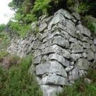 二ノ丸南西側の石垣