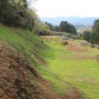 山ノ神堀切から総構の堀と土塁