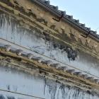 近くの蔵・雨対策の為か軒の数が多い
