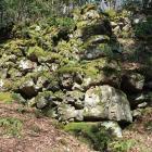 大野木屋敷の高石垣