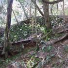 三田村屋敷の石垣