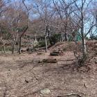 桜馬場西側下段