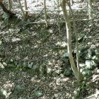 切井戸下にある石垣