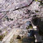 日本の道100選 紺屋川