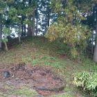 洲島城櫓台全景2